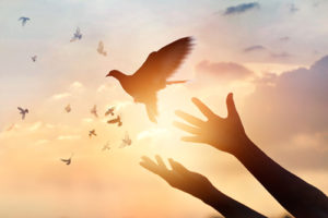 ZOOM: Abiding Prayer Group